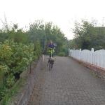 160818_Übung Rettungshundestaffel_002