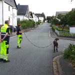 160818_Übung Rettungshundestaffel_011