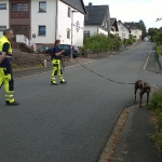 160818_Übung Rettungshundestaffel_022