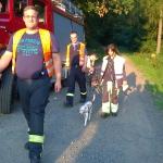 160818_Übung Rettungshundestaffel_031