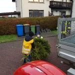 180106_Weihnachtsbäume einsammeln_002