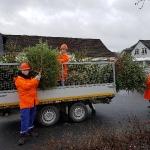 180106_Weihnachtsbäume einsammeln_018