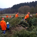 180106_Weihnachtsbäume einsammeln_039