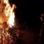 180106_Weihnachtsbäume einsammeln_054