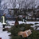 060107_Weihnachtsbäume einsammeln_018