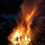 060107_Weihnachtsbäume einsammeln_046