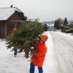 170107_Weihnachtsbäume einsammeln_007