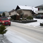 170107_Weihnachtsbäume einsammeln_011