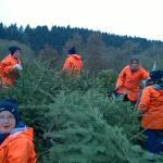 170107_Weihnachtsbäume einsammeln_029