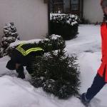 100109_Weihnachtsbäume einsammeln_002