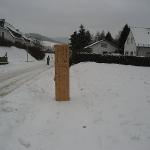 100109_Weihnachtsbäume einsammeln_008