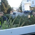 090110_Weihnachtsbäume einsammeln_014