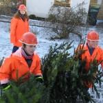 090110_Weihnachtsbäume einsammeln_021